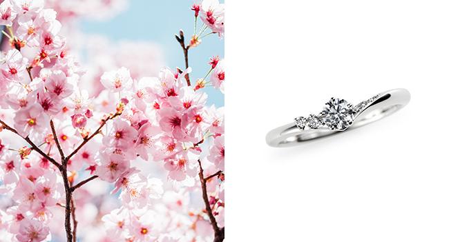 シンプルなデザインの中に、美しい日本の四季を感じて